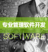 专业管理软件开发